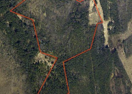 Suur metsakinnistu Hiiumaal