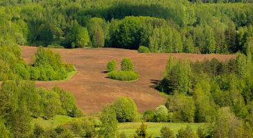 Põllumaa-metsamaa-müük-Eestis
